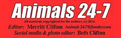 animals24-7