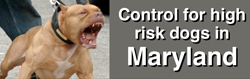 high-risk-dogs-maryland