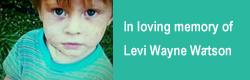 levi-wayne
