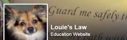 louies-law