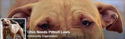 ohio-needs-pit-bull-laws