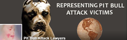 pit-bull-attack-lawyers