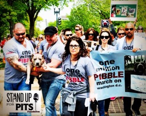 Scope of issues for National Pit Bull Victim Awareness Day
