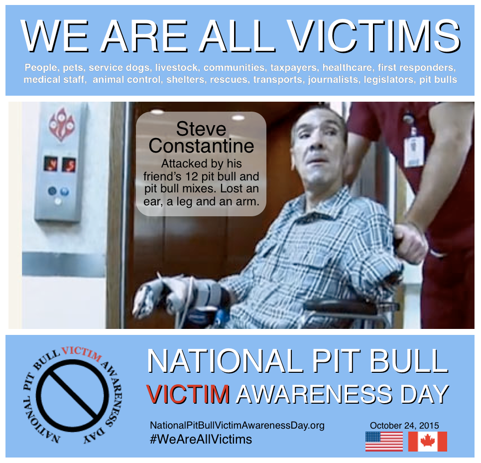 Social media memes for National Pit Bull Victim Awareness Day