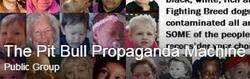 pit-bull-propaganda-machine